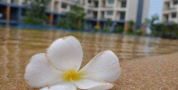 Laguna Beach Resort 2